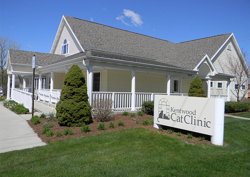 Kentwood Cat Clinic, Kentwood
